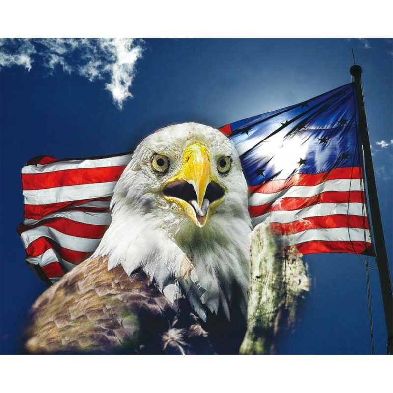 Eagle by the Flag DI...
