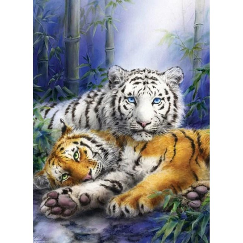 White & Brown Tigers...