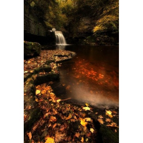 Waterfall in an Autumn Forest