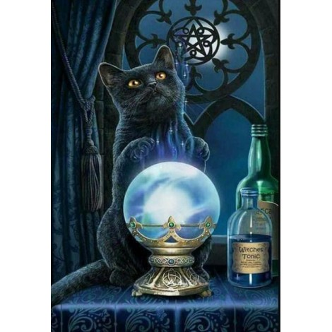 The Wizard Cat by Lisa Parker