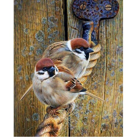 Sparrows Sitting on the Rope