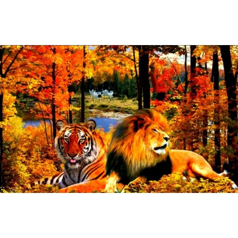 Lion & Tiger in the Forest