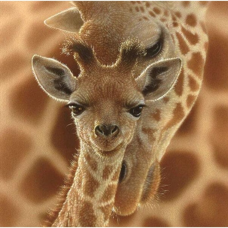 Mother Giraffe with ...
