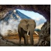 Elephant in the Cave