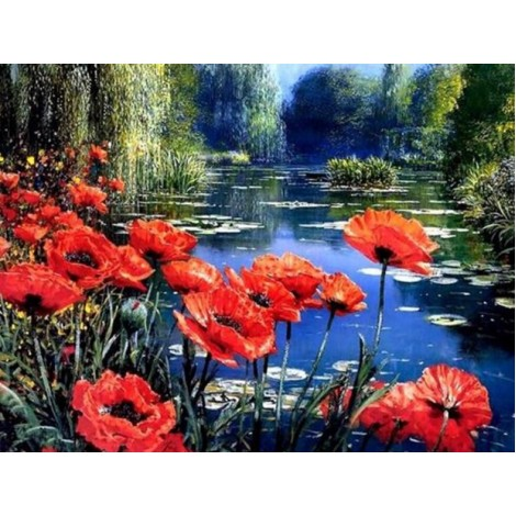 Poppy Flowers by the Lake