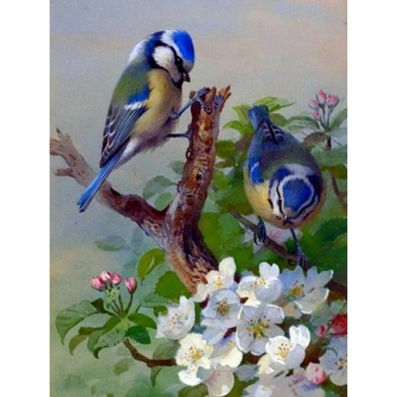 Blue Sparrows & Whit...