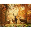 Amazing Forest DIY Painting Collection