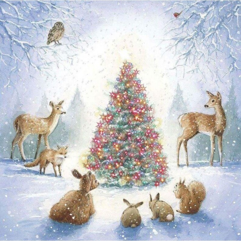 Animals & Christmas ...